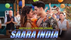 aastha gill, aastha gill all songs, sony music india, Indian music song, Priyanka sharma